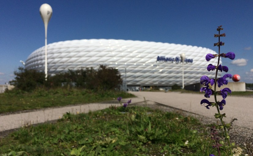 In Focus: The Allianz Arena